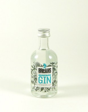Breaks Premium Dry Gin 50ml